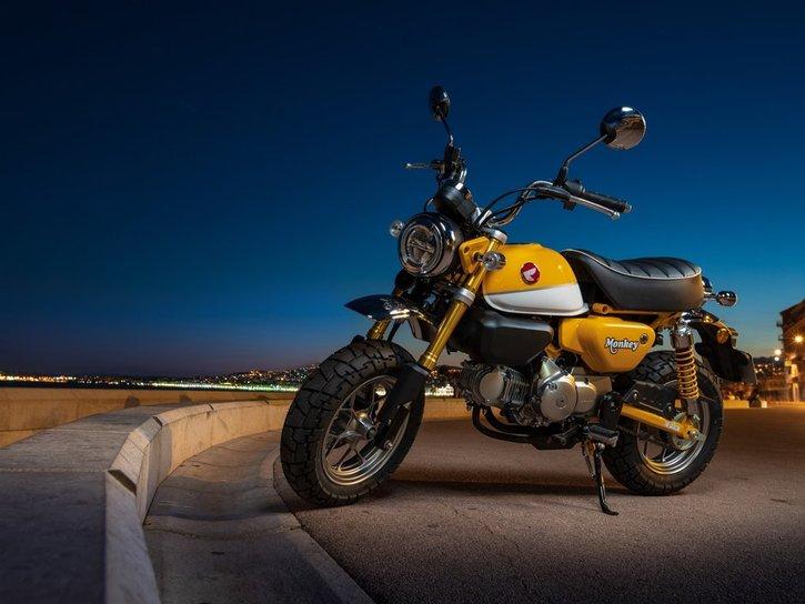 Honda Monkey 125 2020 show
